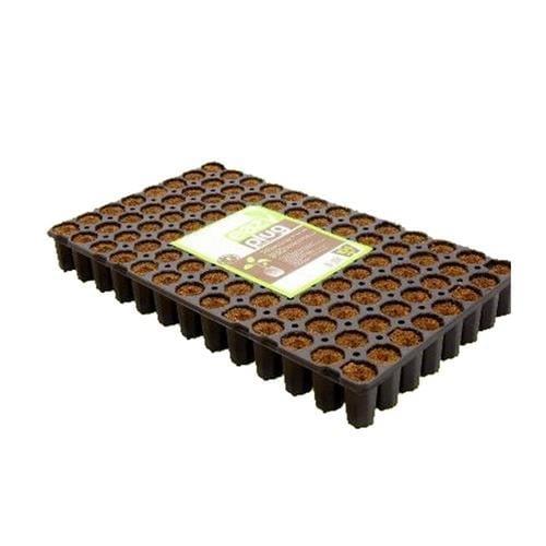 eazy plug tray