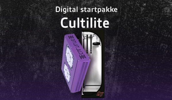 LED-Cultlite Antares