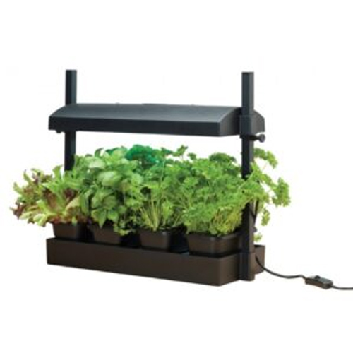 Micro grow garden black 50 cm