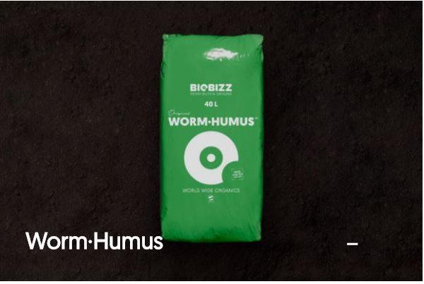 worm-biobizz